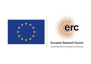 erc + flag